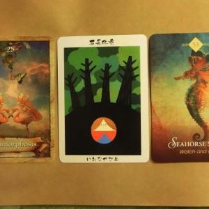 1/13 山羊座の新月ーマップオラクル「変容」:日本の神様カード「石長比売(不動の強さ・安心)」:アニマル「タツノオトシゴ」