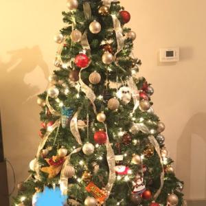 クリスマスツリーセラピー