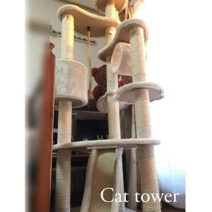ダイソー園芸用縄がキャットタワー修復にピッタリだった!