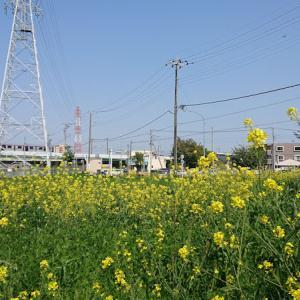 【伊奈】Ina Sketch~羽貫駅近くで、春っぽい景色を