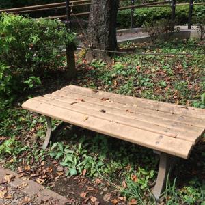 公園にある鼓太郎のベンチ