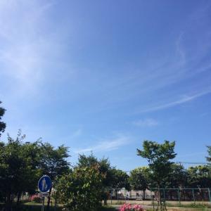 北海道だと言っても暑い時は暑いねぇ。連日の30度越え。