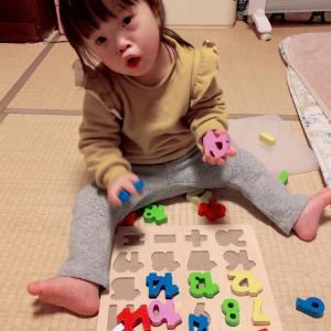 素敵なお譲り(知育玩具)