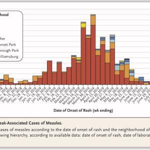 ニューヨークにおける麻疹アウトブレイク(2018~2019)に関する論文を紹介します