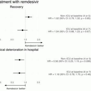COVID-19に対するレムデシビル投与臨床試験の事後解析
