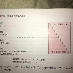 【医療関係者向け】抗菌薬についてざっとまとめてみた(1)