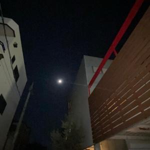 お月さんが綺麗ですね、
