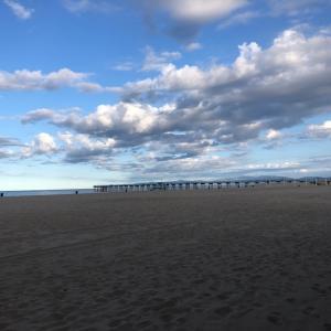 ロスのビーチや公園がどんどん閉鎖!ハモサビーチも〜♡