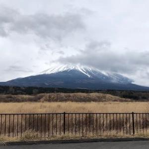 シャイな富士山は雲隠れ