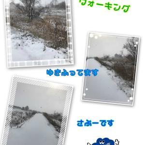 久々ウォーキング(((ง  ˙-˙  )))ว