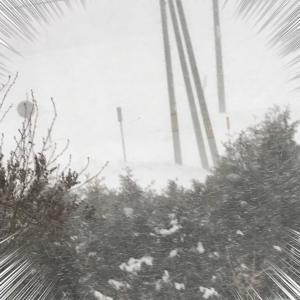 風に雪=猛吹雪.☃︎.'.°🌀❄☃
