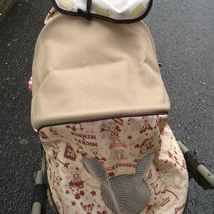 愛犬が立ったて歩けるようになる@また禁酒頑張るよ!