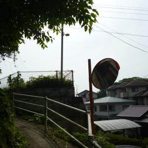 その後の大和町 11