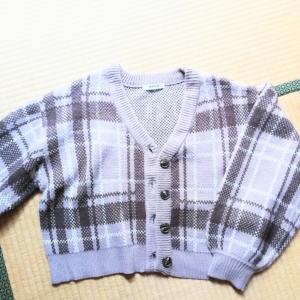 洋服・下着の整理☆手放し品の合計→828