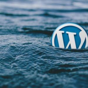 WordPressの削除方法・手順について(ロリポップ!編)