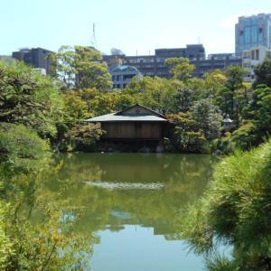 相楽園は神戸市にある唯一の日本庭園! 都会のオアシスです