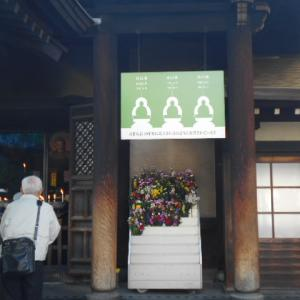 お墓はもういらない!一心寺には骨で作られた仏像が安置されています