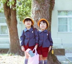 内閣と消費税・幼児教育無償化法案の関係