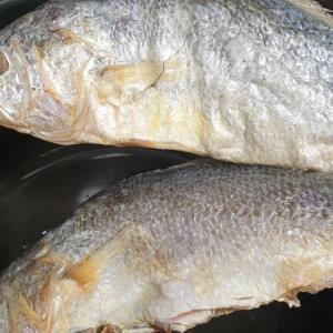 韓国ドラマで見るあの魚を