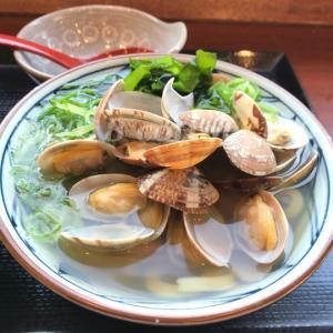【丸亀製麺】あさりうどんと親子丼、持ち帰りで食べたかしわ天の感想