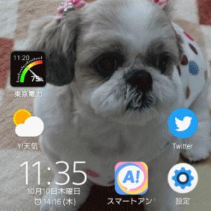 東京電力の電力使用状況を確認できる「電力の使用状況ウィジェット」