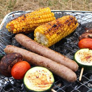 【BBQ】ドイツで楽しむバーベキュー!定番の食材は?グリルの種類は?在住者が紹介