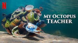 My Octopus Teacher<その2>