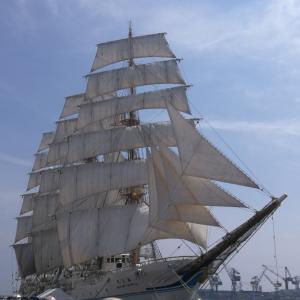 総帆展帆は美しい