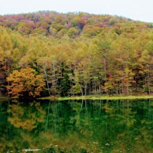 みしゃが池~横谷渓谷の空撮 奥蓼科の紅葉速報