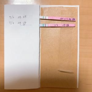 31歳 不妊治療 ブログ【低温期14日目】タイミングがわからない クロミッド 排卵日チェッカーの陽性反応が薄い