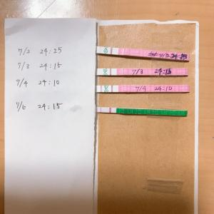 31歳 不妊治療 ブログ【高温期1日目】すでに下腹部がチクチクする