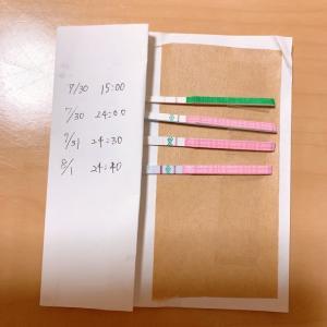 31歳 不妊治療 ブログ【低温期14日目】人工授精とタイミング法を併用
