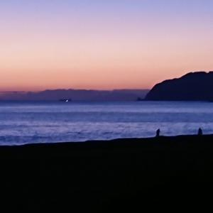 投げサビキで浜から釣る鯵「帰ろうと 思えば釣れて 帰れない」11月23日
