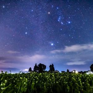 そば畑と冬の大三角ー大野盆地で星を見てきました^^/ー