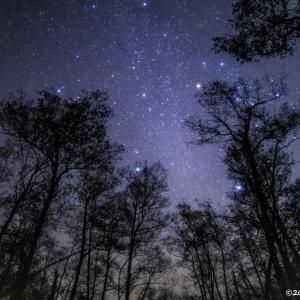 息をのむ美しい星空! 敦賀市の池河内湿原で星を見てきました!