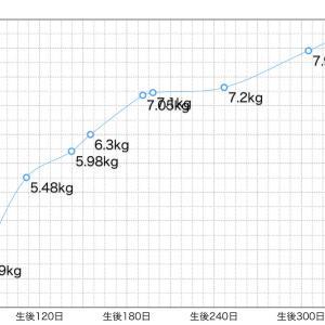 体重変化グラフ