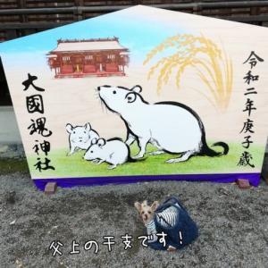 イルミネーションへGO! 大國魂神社編