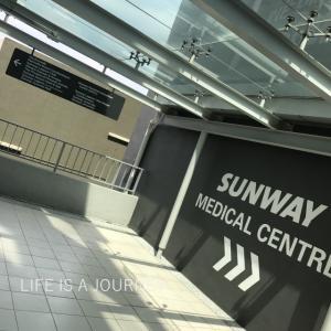 マレーシア移住16ヵ月目【AREA:Sunway】エコウォークで気分はキャノピーウォーク♡