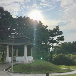 マレーシア移住23ヵ月目【AREA:Bukit Jalil】ひと駅分を朝活ウォーキング♡