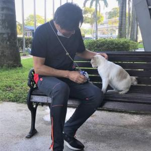 マレーシア移住23ヵ月目【AREA:Bukit Jalil】ニャン友♡ねこ、ネコ、猫、クチン♡