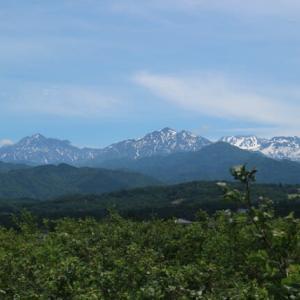 ブルーベリー圃場からの風景アラカルト/立山連峰