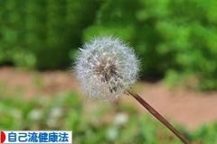7/17山羊座満月月食 ( ♪ Let it go )