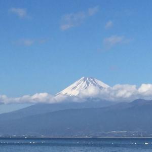 のんびりデブデブ旅行(6)富士山五合目(1年と272日)