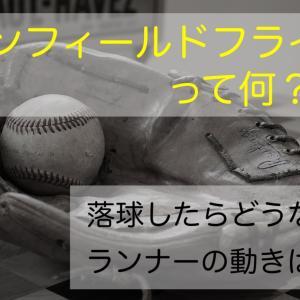 【わかりやすい】インフィールドフライって何??落球した時や、ランナーはどうすればいいの?