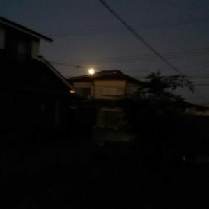 美しき満月