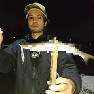 デカい魚の群れの正体は⁉️【北九州エリア〜洞海湾】アジング