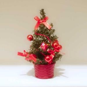 ク、クリスマスツリー 飾ってみる?