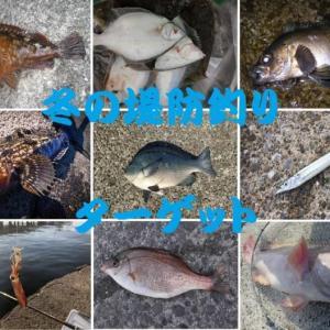 冬の堤防釣りで釣れる魚~釣果で寒さをぶっ飛ばせ!