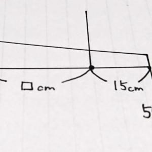 【てこ4】中学受験理科~はじめの一歩(改訂版)