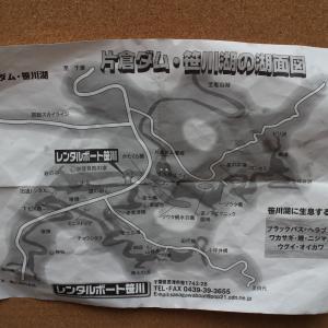 笹川湖 凸 キョウハユルス.